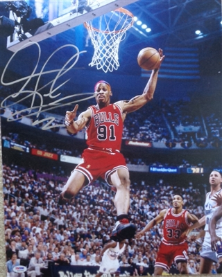 Dennis Rodman Chicago Bulls Signed 16x20 Action Photo PSA/DNA COA No Reserve