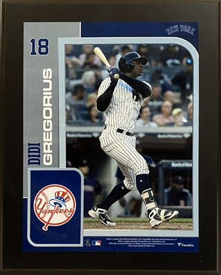 Former New York Yankees Shortstop Didi Gregorius Unsigned Wall Plaque